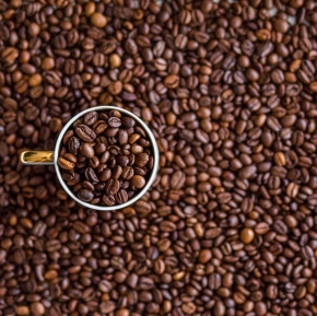Why I will not give upcoffee